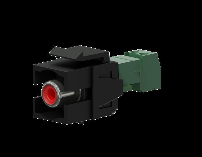Procab Keystone adapter - RCA female - 2-pin terminal block - pair Black
